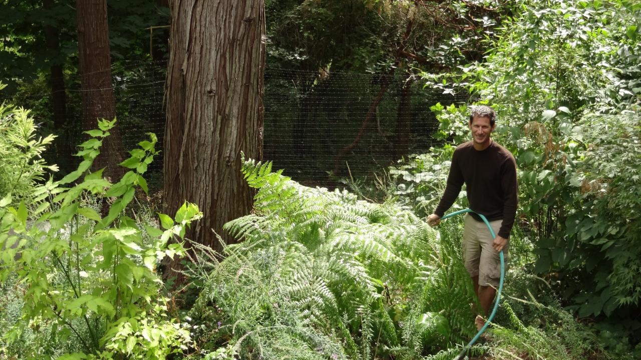 David Watering the Garden