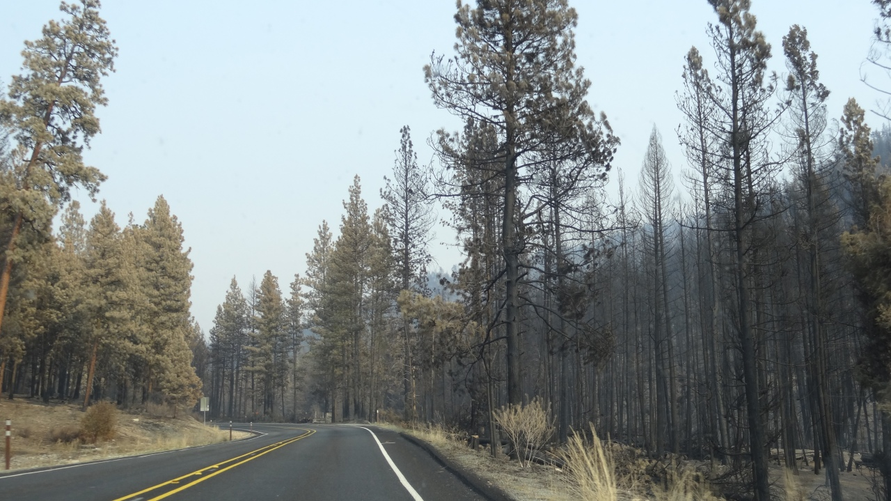 We Saw Proof of Current Forest Fires in Washington on Our Drive. Fortunately No Homes Were Lost.