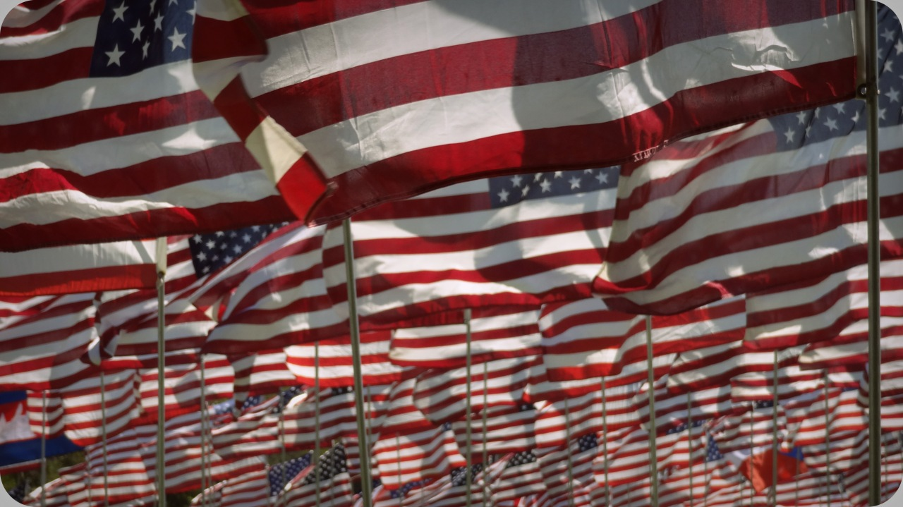 An Immigrant's Guide to Becoming an American Citizen – overeat andoverreact