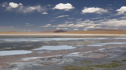 Salt Patches, P.N. Avaroa - BOLIVIA