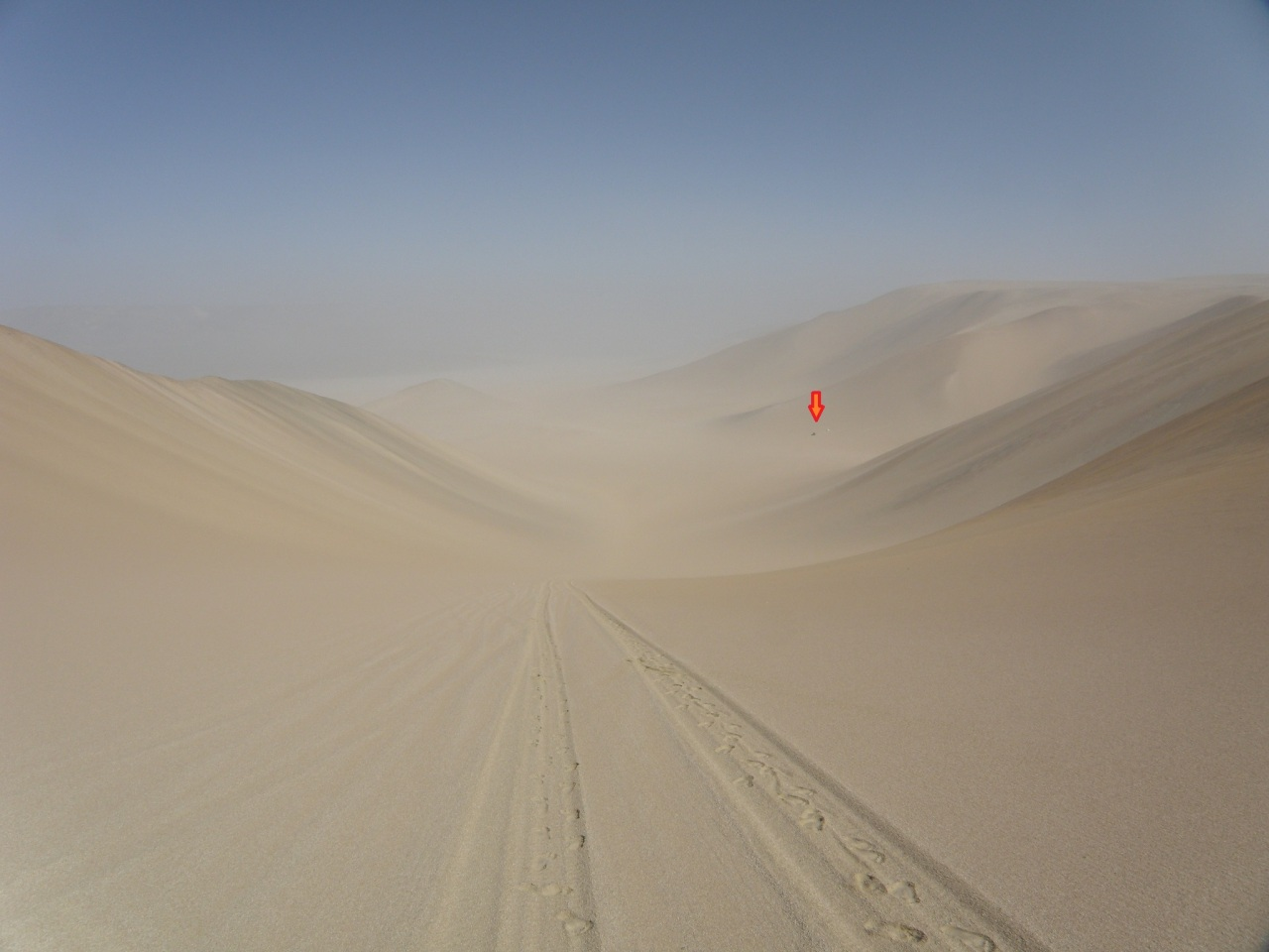 Lost in theDesert
