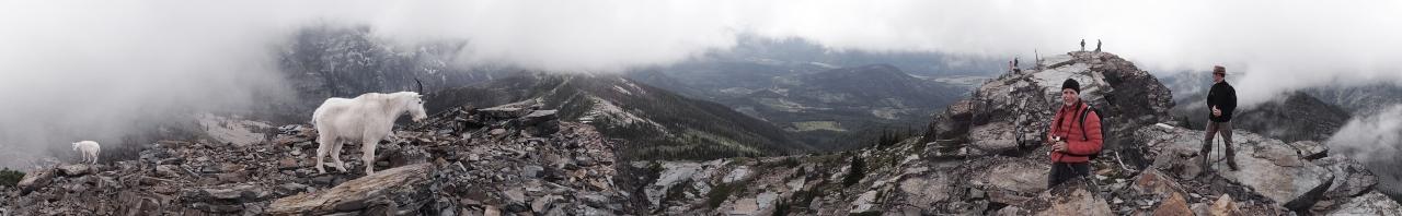 Atop Scotchman Peak