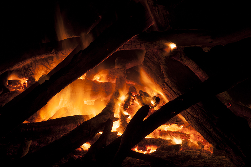 Campfires and DeadMice